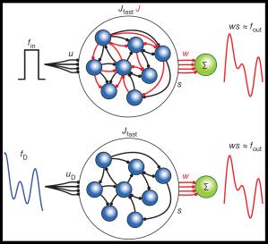 autonomous_driven_networks